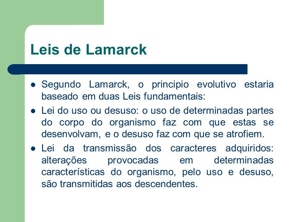 Leis de Lamarck Segundo Lamarck, o principio evolutivo estaria baseado em duas Leis fundamentais: