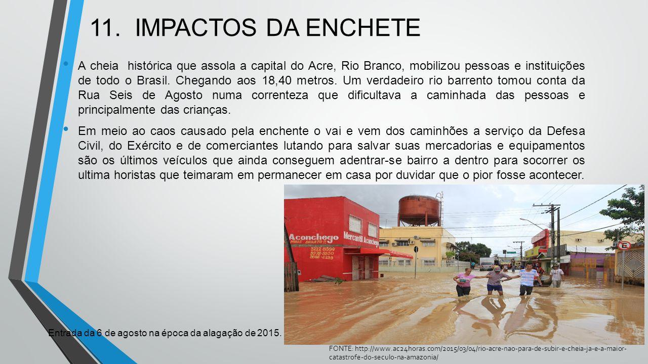 11. IMPACTOS DA ENCHETE