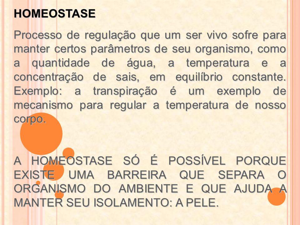 HOMEOSTASE