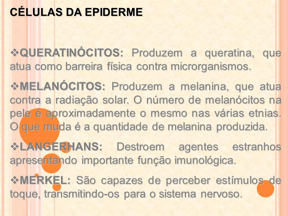 CÉLULAS DA EPIDERME QUERATINÓCITOS: Produzem a queratina, que atua como barreira física contra microrganismos.