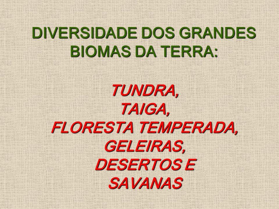 DIVERSIDADE DOS GRANDES BIOMAS DA TERRA: TUNDRA, TAIGA, FLORESTA TEMPERADA, GELEIRAS, DESERTOS E SAVANAS