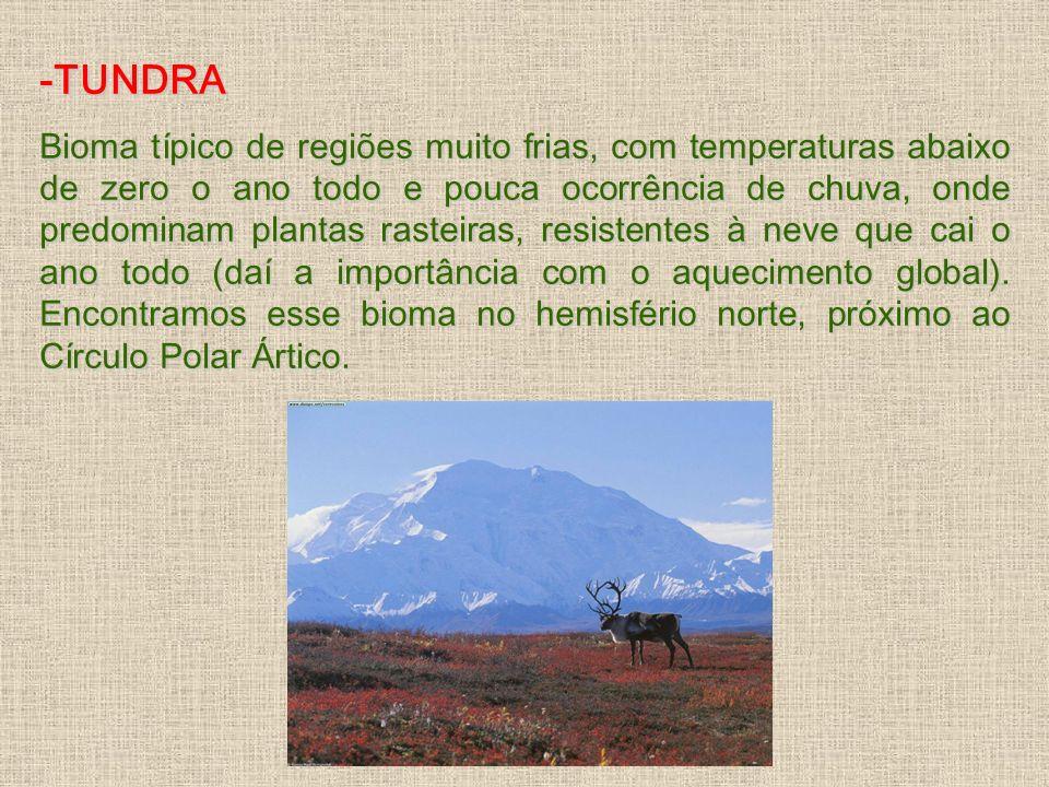 -TUNDRA