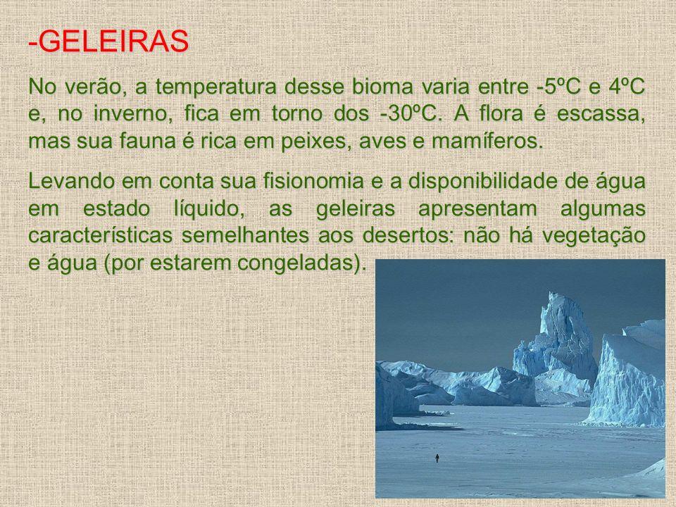 -GELEIRAS