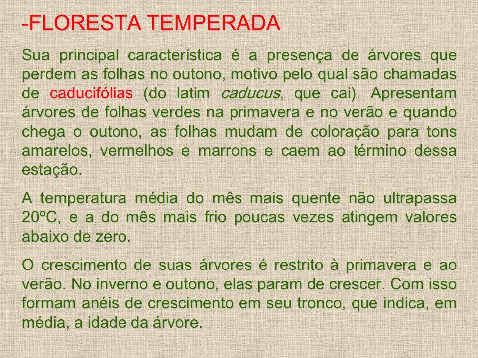 -FLORESTA TEMPERADA