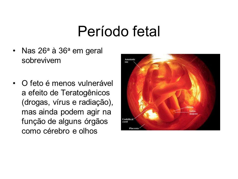 Período fetal Nas 26a à 36a em geral sobrevivem