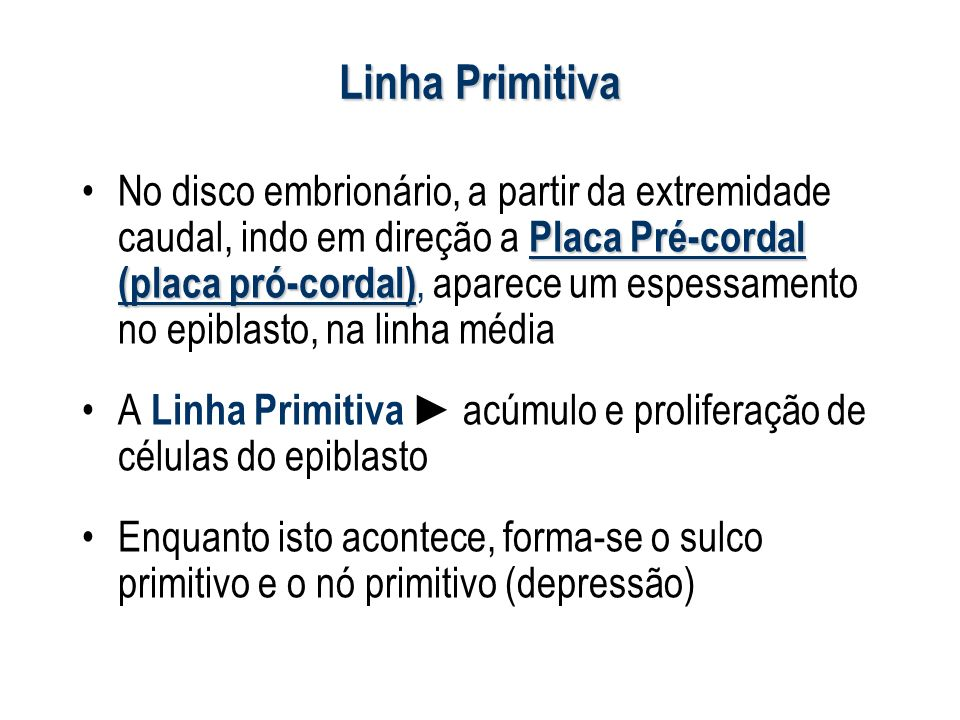 Linha Primitiva