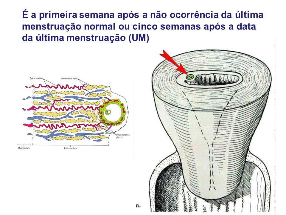 É a primeira semana após a não ocorrência da última menstruação normal ou cinco semanas após a data da última menstruação (UM)