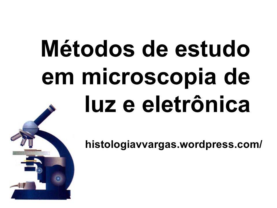 Métodos de estudo em microscopia de luz e eletrônica