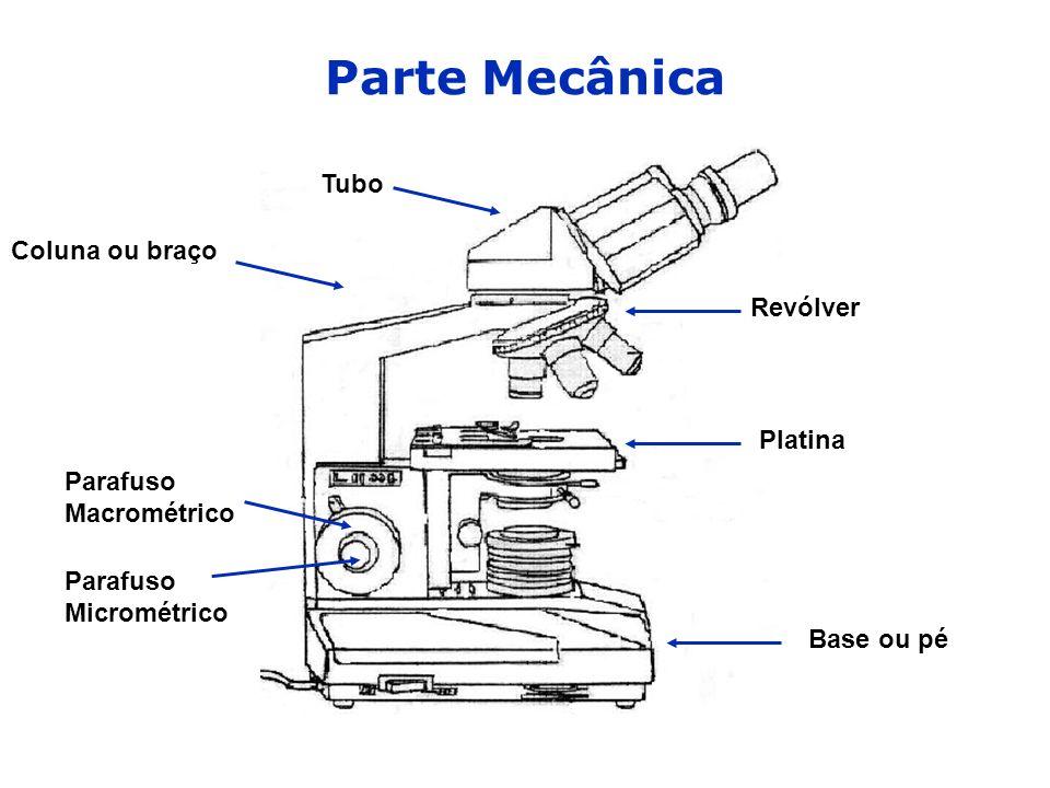 Parte Mecânica Tubo Coluna ou braço Revólver Platina