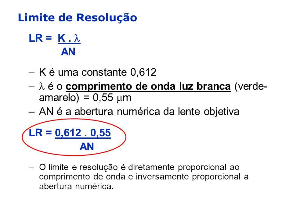  é o comprimento de onda luz branca (verde-amarelo) = 0,55 m
