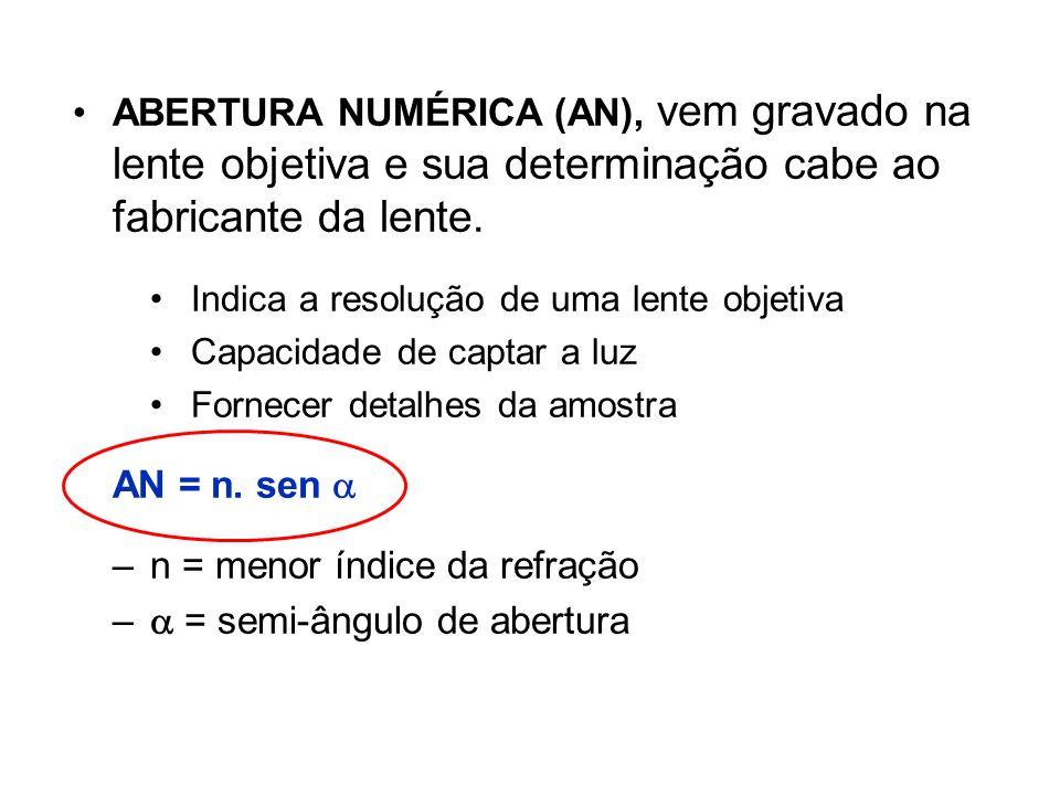 n = menor índice da refração  = semi-ângulo de abertura