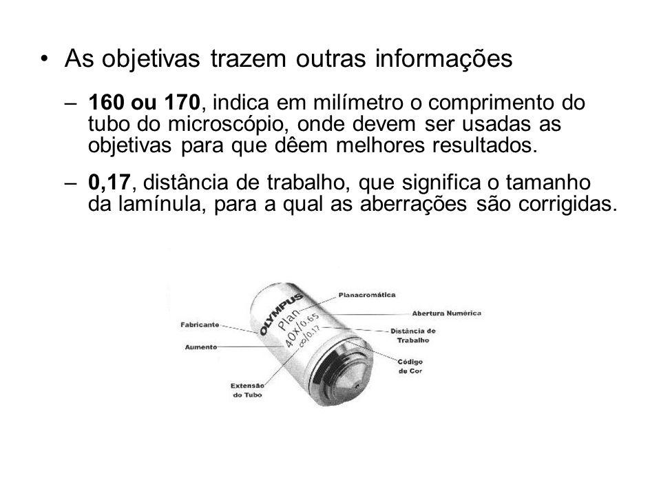 As objetivas trazem outras informações