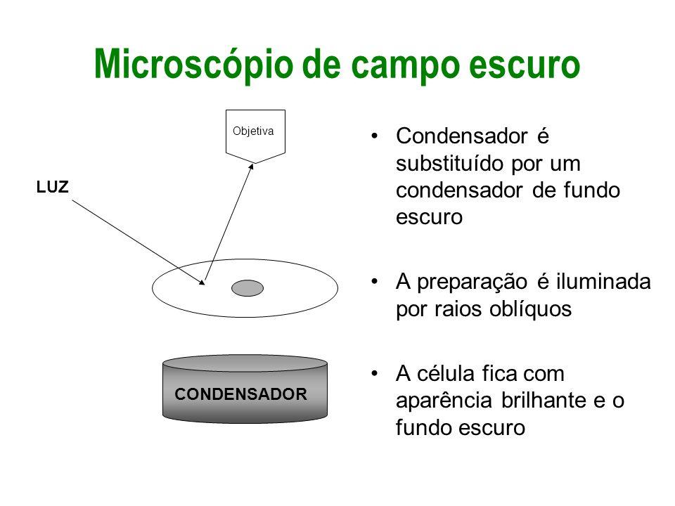 Microscópio de campo escuro