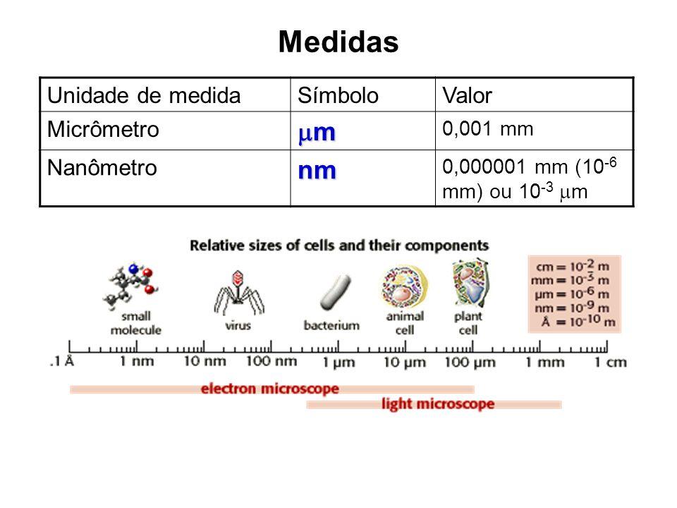 Medidas m nm Unidade de medida Símbolo Valor Micrômetro Nanômetro