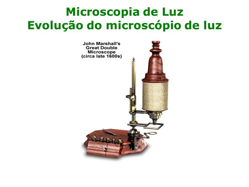 Microscopia de Luz Evolução do microscópio de luz