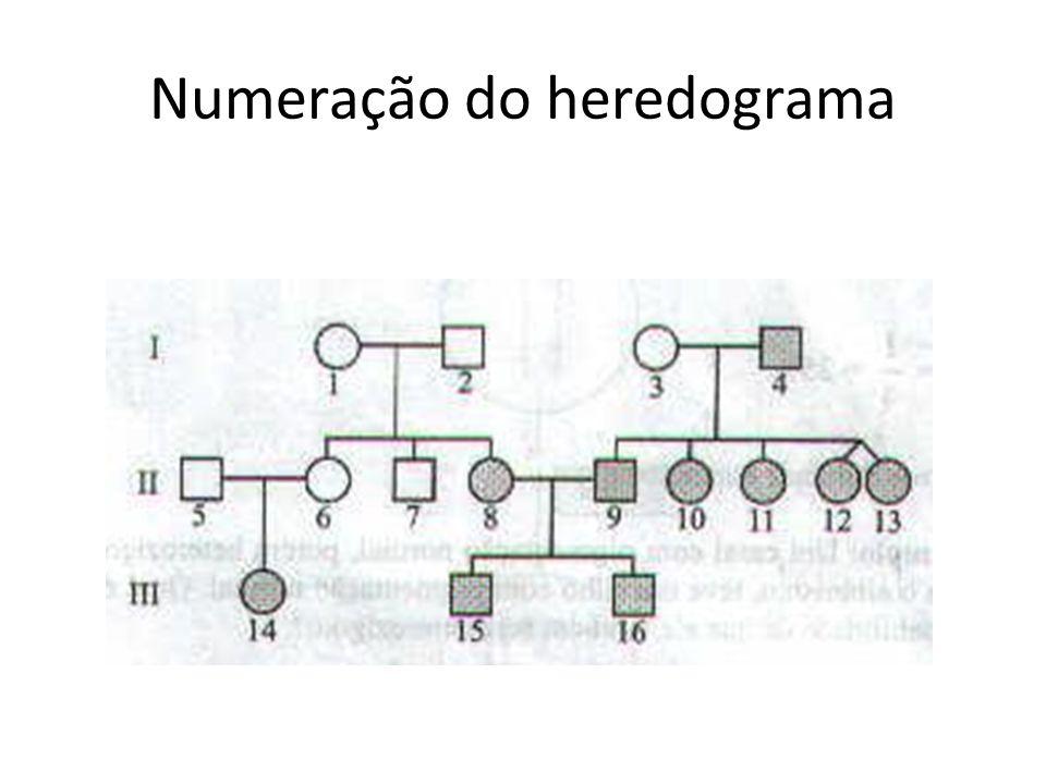 Numeração do heredograma