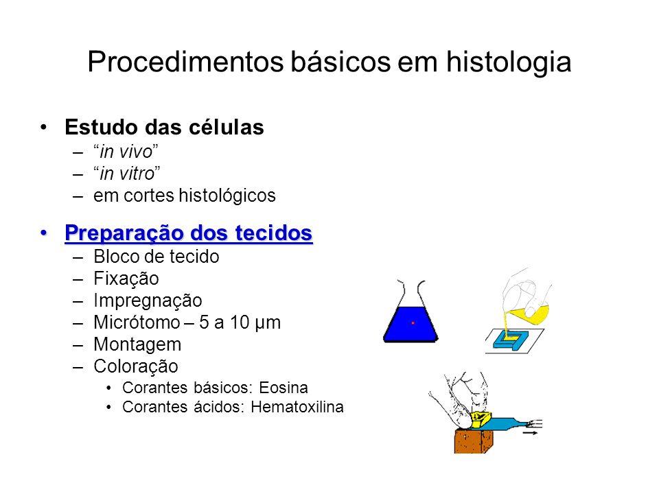 Procedimentos básicos em histologia