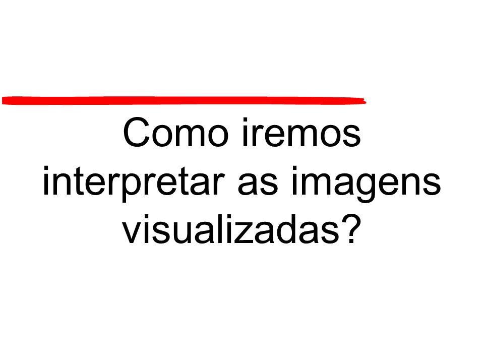 Como iremos interpretar as imagens visualizadas