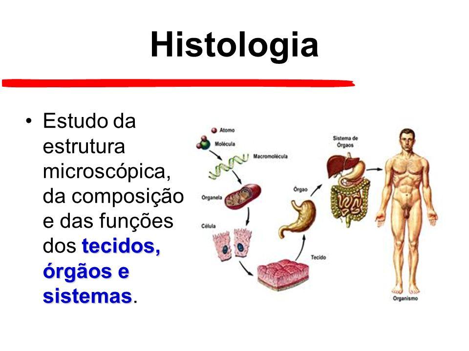 Histologia Estudo da estrutura microscópica, da composição e das funções dos tecidos, órgãos e sistemas.
