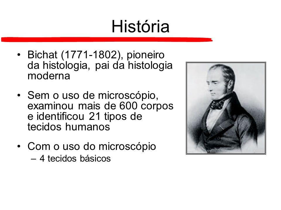 História Bichat (1771-1802), pioneiro da histologia, pai da histologia moderna.