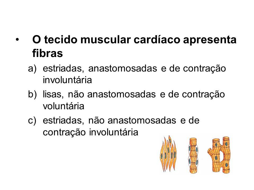 O tecido muscular cardíaco apresenta fibras