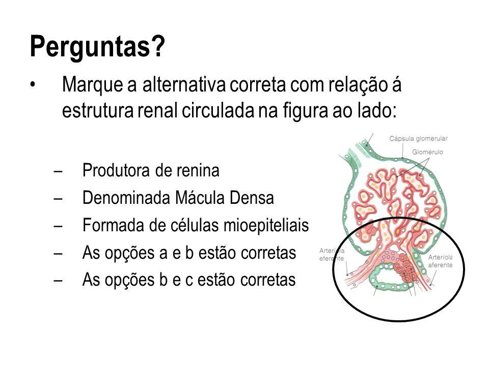 Perguntas Marque a alternativa correta com relação á estrutura renal circulada na figura ao lado: Produtora de renina.