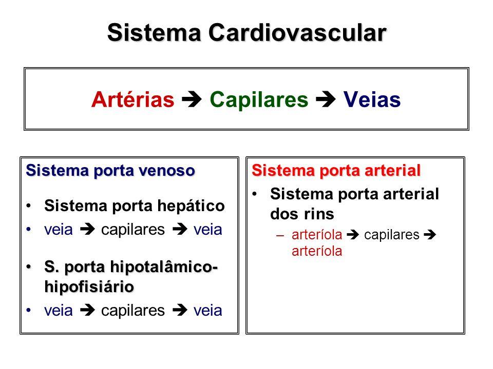 Artérias  Capilares  Veias