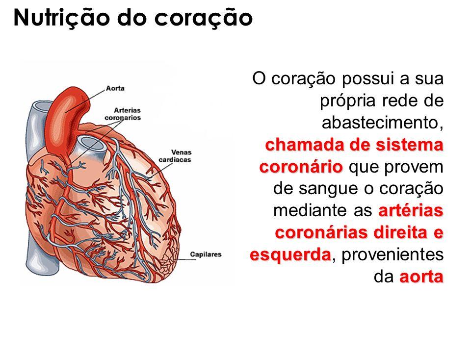 Nutrição do coração