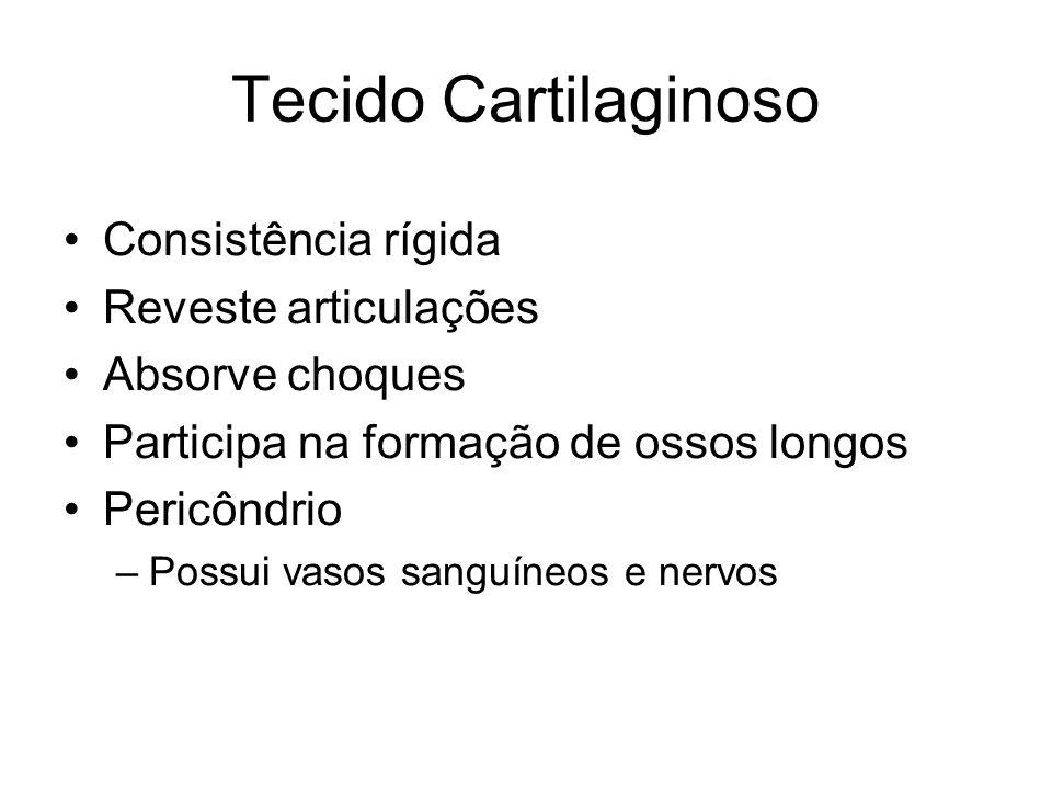 Tecido Cartilaginoso Consistência rígida Reveste articulações