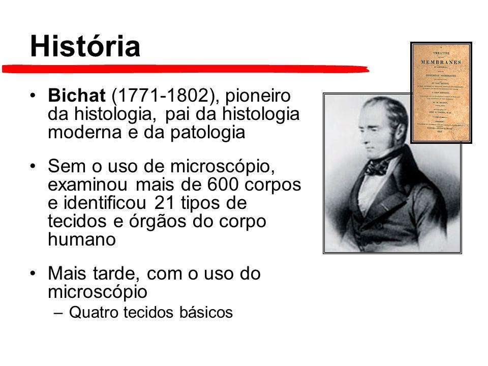 História Bichat (1771-1802), pioneiro da histologia, pai da histologia moderna e da patologia.