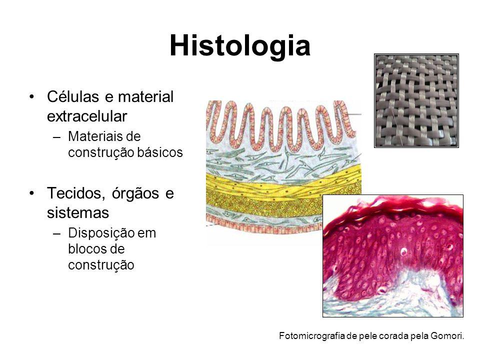 Histologia Células e material extracelular Tecidos, órgãos e sistemas