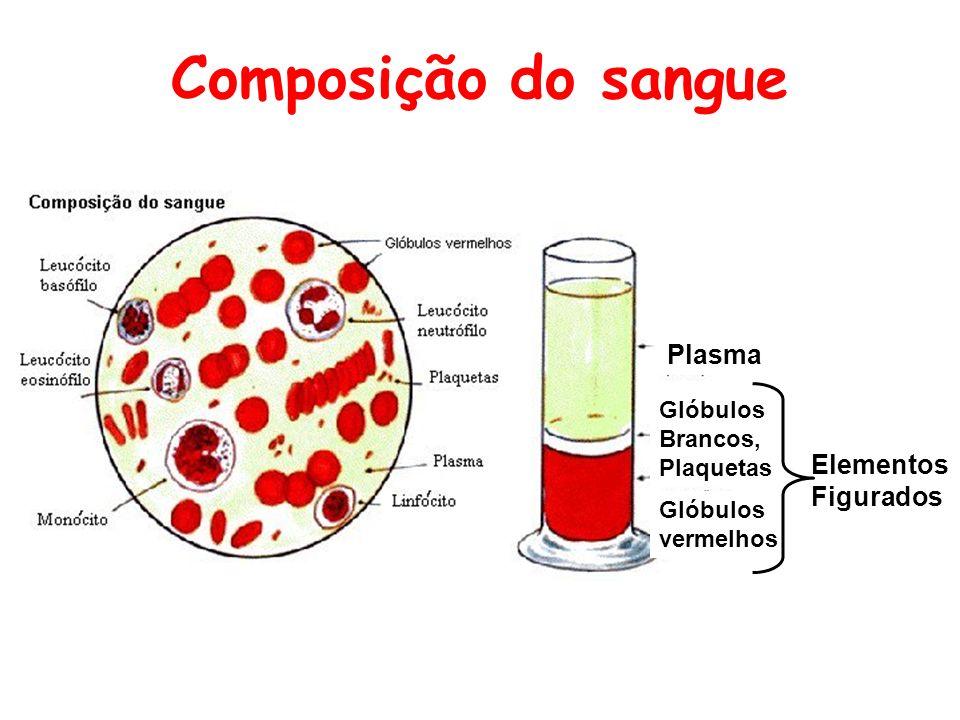 Composição do sangue Plasma Elementos Figurados