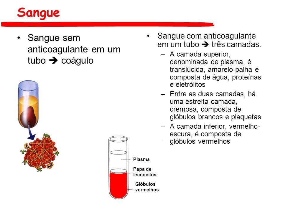 Sangue Sangue sem anticoagulante em um tubo  coágulo