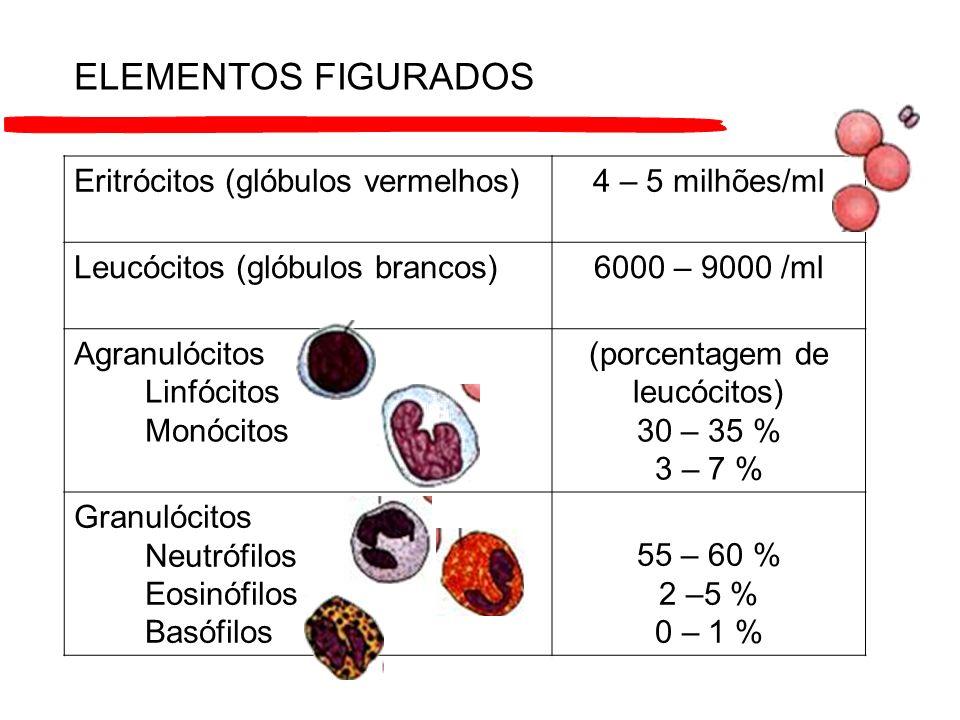 (porcentagem de leucócitos)