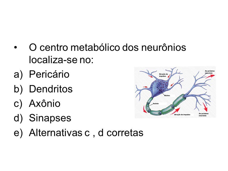 O centro metabólico dos neurônios localiza-se no: