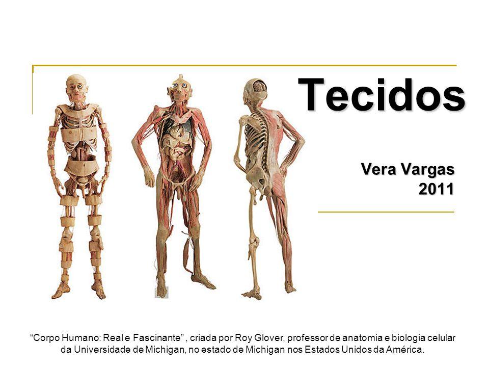 TecidosVera Vargas. 2011.