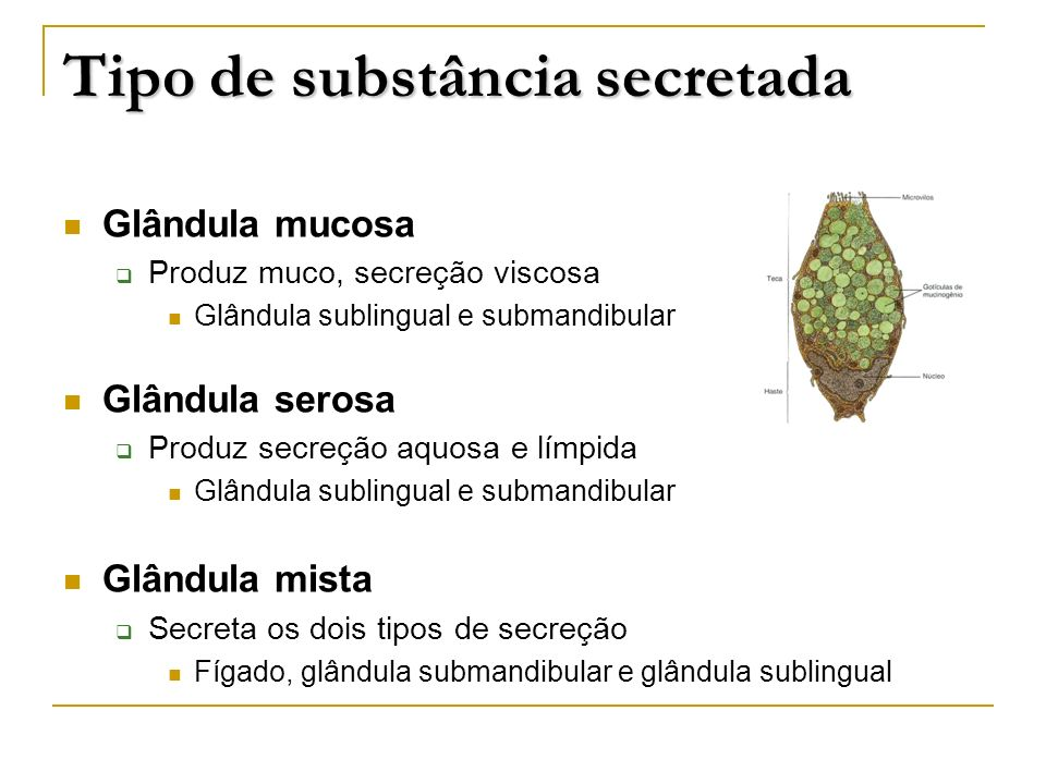 Tipo de substância secretada