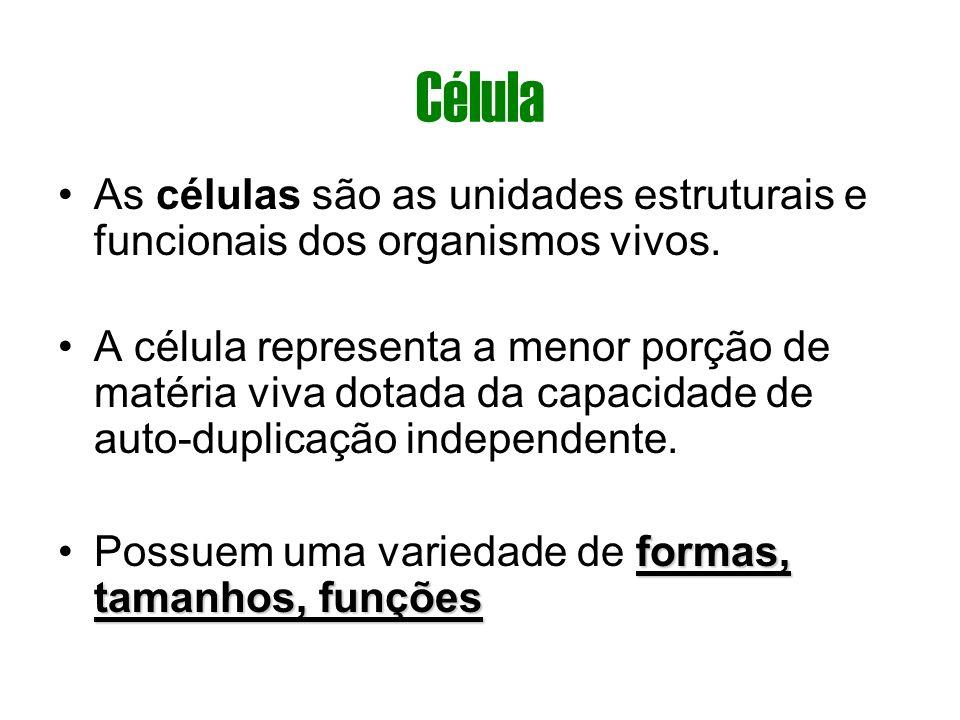 CélulaAs células são as unidades estruturais e funcionais dos organismos vivos.