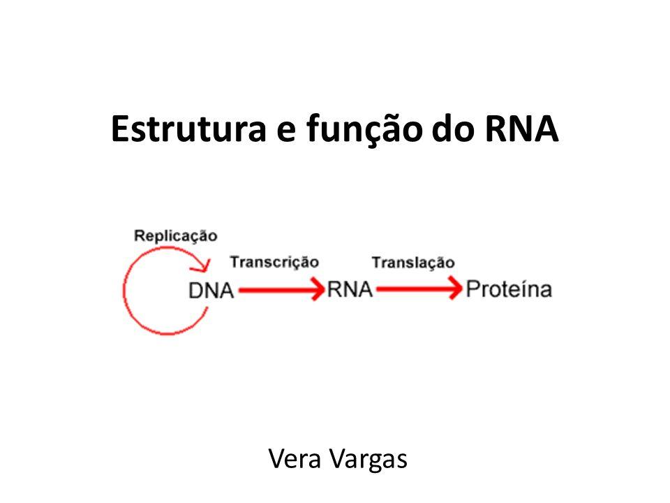 Estrutura e função do RNA
