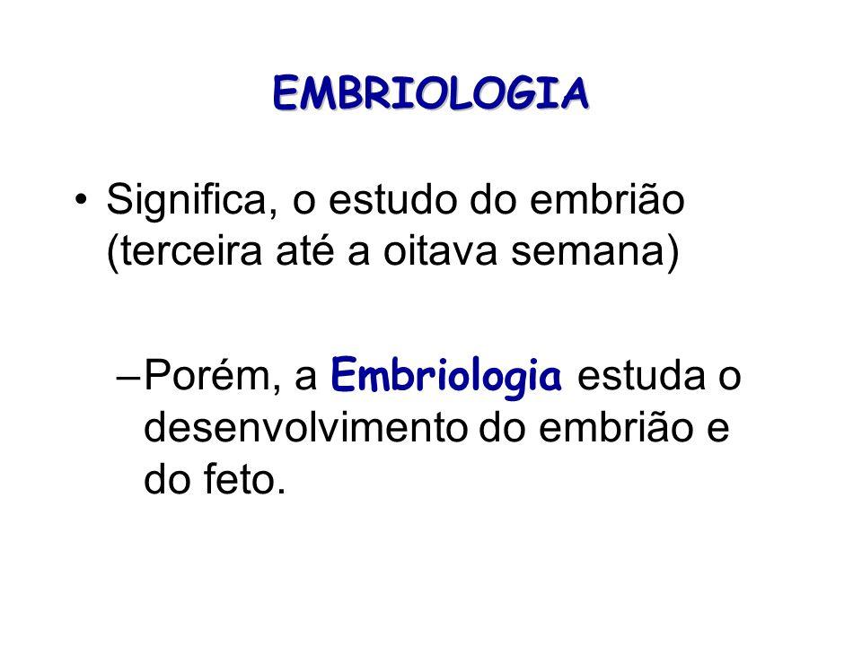 EMBRIOLOGIA Significa, o estudo do embrião (terceira até a oitava semana) Porém, a Embriologia estuda o desenvolvimento do embrião e do feto.