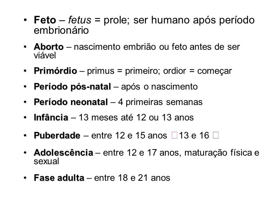 Feto – fetus = prole; ser humano após período embrionário