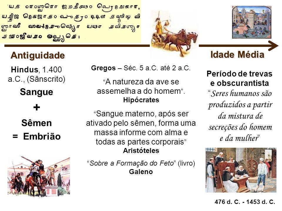 + Antiguidade Idade Média Sangue Sêmen = Embrião