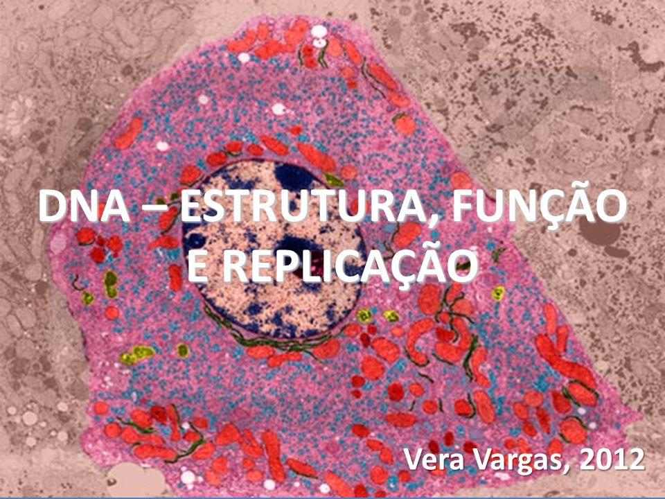 DNA – ESTRUTURA, FUNÇÃO E REPLICAÇÃO