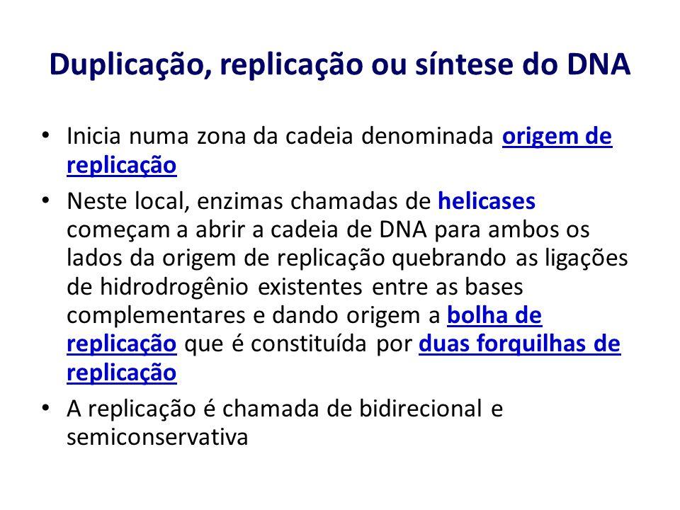 Duplicação, replicação ou síntese do DNA