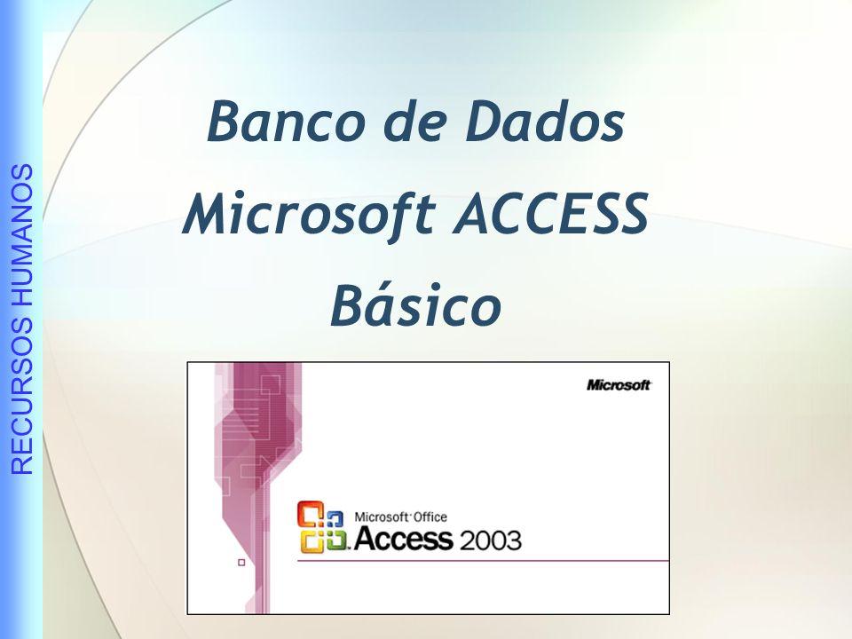 Banco de Dados Microsoft ACCESS Básico