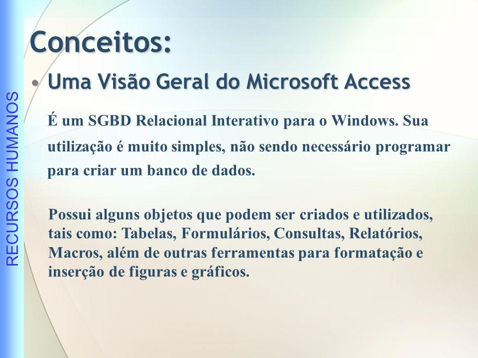 Conceitos: Uma Visão Geral do Microsoft Access