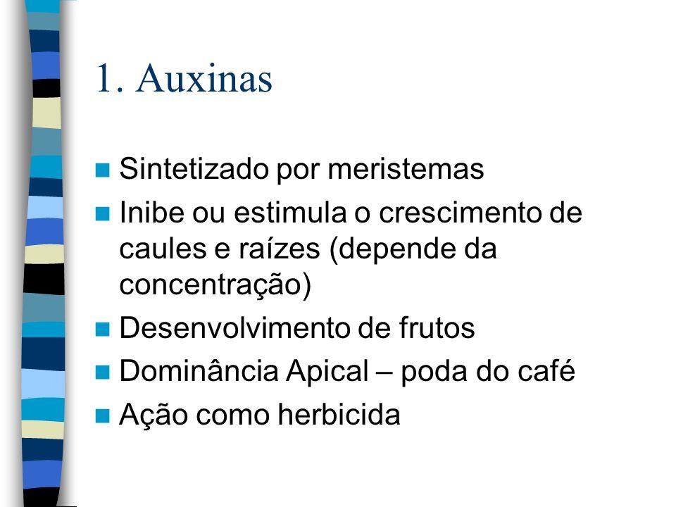 1. Auxinas Sintetizado por meristemas