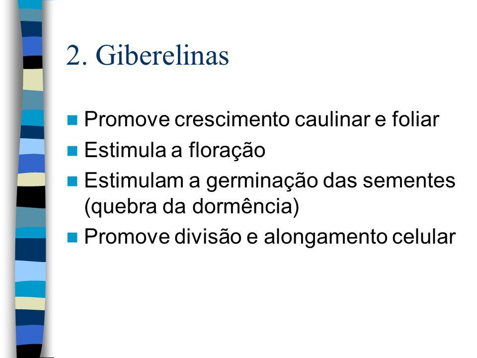 2. Giberelinas Promove crescimento caulinar e foliar