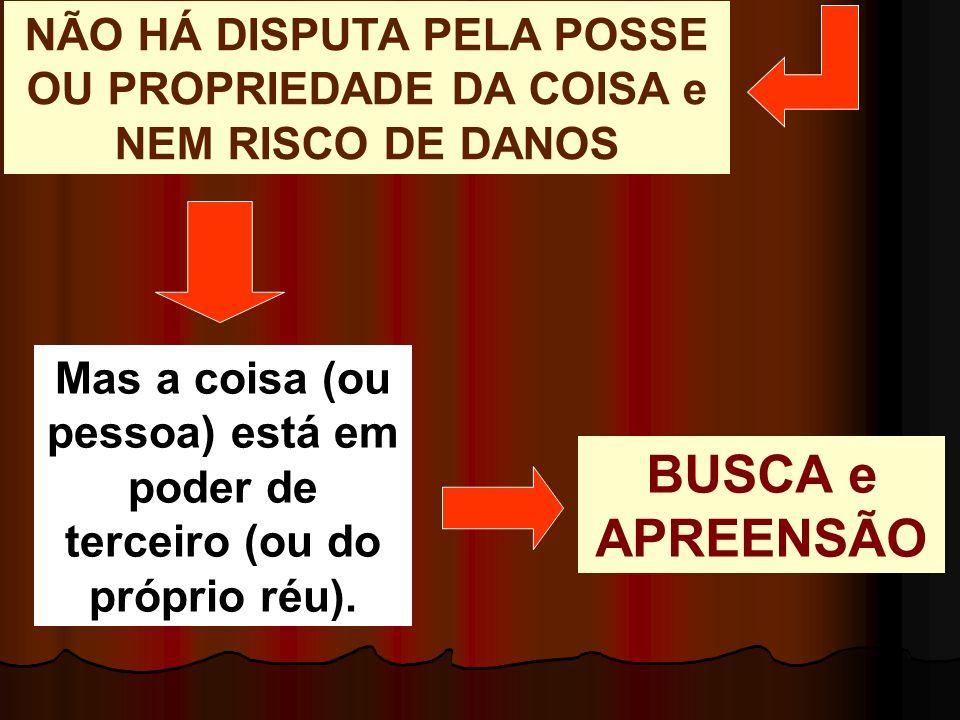 NÃO HÁ DISPUTA PELA POSSE OU PROPRIEDADE DA COISA e NEM RISCO DE DANOS