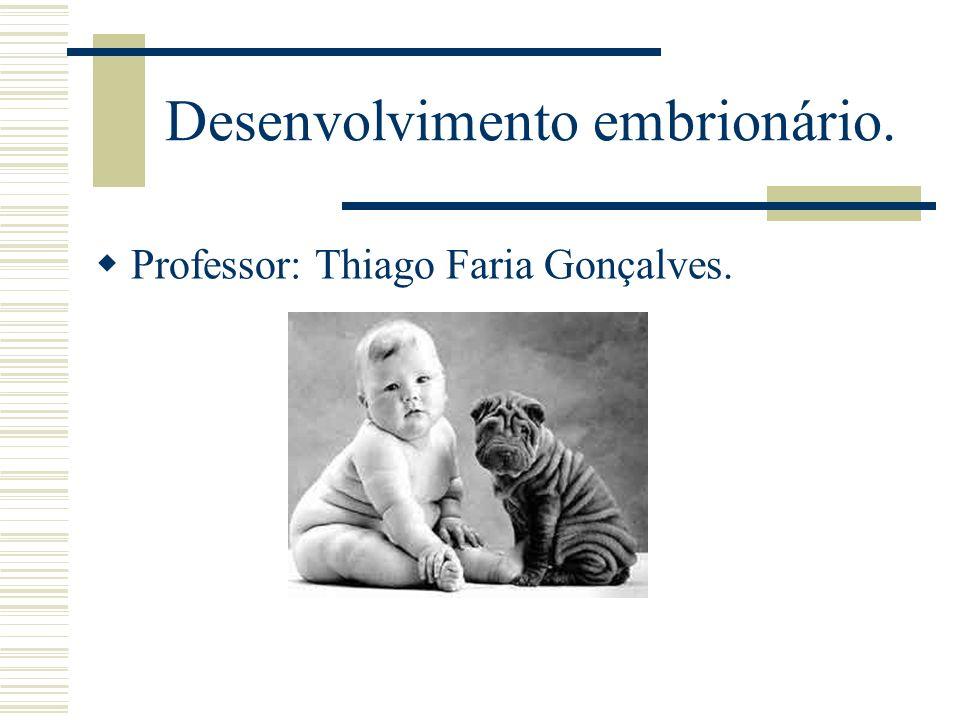 Desenvolvimento embrionário.